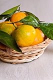 Tangerines with water drops Stock Photo