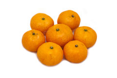 Tangerines on a white background Stock Photography