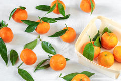 Tangerines on white tablecloth Stock Photo