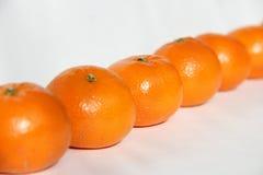 Tangerines on white. Tasty tangerines on white background Royalty Free Stock Photography