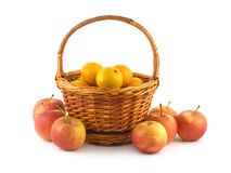 Tangerines in wicker basket and apples near isolated. Many orange tangerines in brown wicker basket and some apples near isolated on white closeup Stock Photos