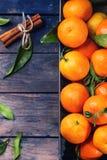 Tangerines With Cinnamon Stock Photos