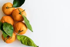 Tangerines z gałąź na białym tle zdjęcie stock