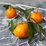 Tangerines z liśćmi Fotografia Royalty Free