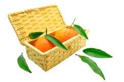 Tangerines z liśćmi w koszu Zdjęcia Royalty Free