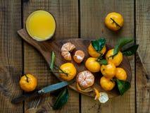 Tangerinezitrusfrüchte mit Blättern stockbild