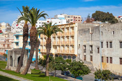 Tangier, Morocco. Street view with palm trees Stock Image