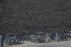 A tangle of bicycles leaning on each other in university town Stock Images