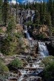 Tangle creek falls, jasper national park stock photography