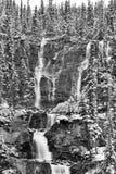 Tangle Creek Falls Stock Photo