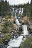 Tangle Falls. Located off the Icefields Parkway between Banff & Jasper in Alberta, Canada Royalty Free Stock Photography
