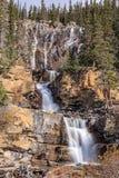 Tangle Falls Royalty Free Stock Image