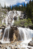 Tangle Falls Royalty Free Stock Photos
