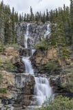 Tangle Falls - Jasper National Park Royalty Free Stock Image