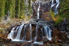 Tangle Falls - Jasper Park. Scenic view of Tangle Falls at Jasper National Park of Canada Royalty Free Stock Photos