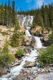 Tangle Falls. Scenic Mountain waterfall, Tangle Falls Jasper National Park Alberta Canada Royalty Free Stock Photo