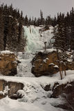 Tangle Falls in Winter. Tangle Falls in the Canadian Rockies, frozen in February Royalty Free Stock Photos