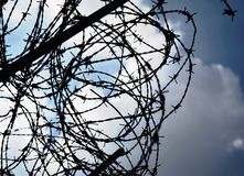 Tangled barbed wire against the sky royalty free stock photos