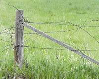 Tangled Barbed Wire Fence Royalty Free Stock Photos