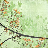 Tangled Blossom Border on Antique Paper. And Bamboo Textured Background Royalty Free Stock Photos