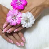 Tangled female fingers with nice nails Stock Photo