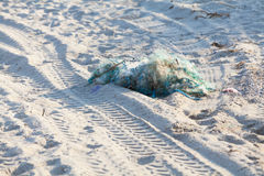 Tangled fishing nets on the beach Royalty Free Stock Images