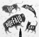 Tangled line buffalo black Stock Photography