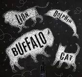 Tangled line buffalo Stock Photo