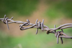 Tangled Web of Barbed Wire Royalty Free Stock Photos