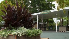 Tanglewood Grounds (6 of 7). A view or scene of Music & Arts stock video footage