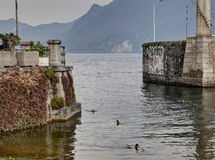 Tangly harbor wall entry in Intra Verbana Royalty Free Stock Images