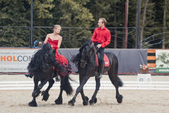 Tango on the Friesian horse Stock Photography