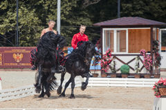Tango on the Friesian horse Stock Photo
