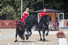Tango on the Friesian horse Stock Image