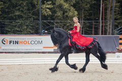 Tango on the Friesian horse Royalty Free Stock Photo