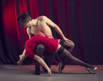 Tango. Royalty Free Stock Photo