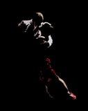 Tangodans van hartstocht Royalty-vrije Stock Foto