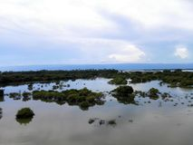 Tanguar-hawor Lizenzfreies Stockfoto