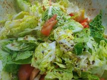 Tangy dressing on a fresh hands made salad. In a silver bowl  preparing to serve Royalty Free Stock Images