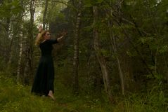 Taniec w lesie Obrazy Royalty Free