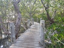 Tanjay Boardwalk royalty free stock photos