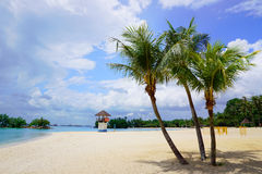 Tanjong Beach of Sentosa Island. Sunny Tanjong Beach of Sentosa Island in Singapore Stock Photography