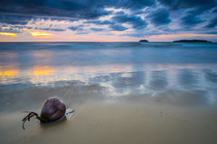 Tanjung Aru Strand-Sonnenuntergang Lizenzfreie Stockfotografie