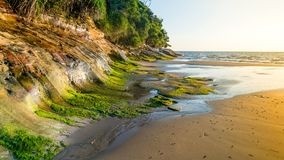 Tanjung Lobang strand royaltyfria foton