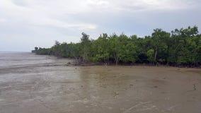 Tanjung Piai National Park Stock Photography