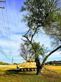 Tank on army base in the sunlight. A tank decorates the grass at Fort Hood Royalty Free Stock Photo