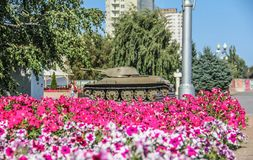 Tank and flowers stock images