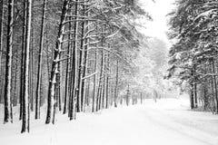 Tankar på en vinterdag arkivbilder