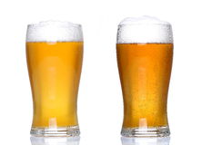 Tankards of lager. With white background and white floor support Stock Photography
