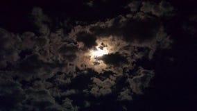 Tankarna av natten royaltyfri foto